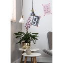Suspension vintage en laiton Cole
