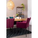 Lot de 2 chaises en velours FLOKE
