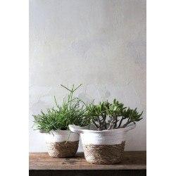 Petits cache-pots INOA en rotin naturel et jacinthe d'eau couleur blanc déco bohème par RedCartel