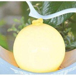 Fontaine design lampe c?ur