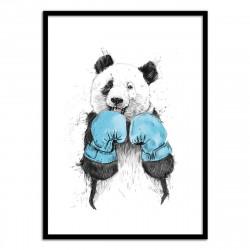 Poster The winner - Panda Boxeur - Balazs Solti 50 x 70 cm