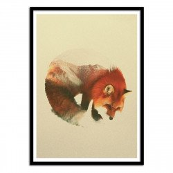 Poster Renard Snow Fox - Andreas Lie
